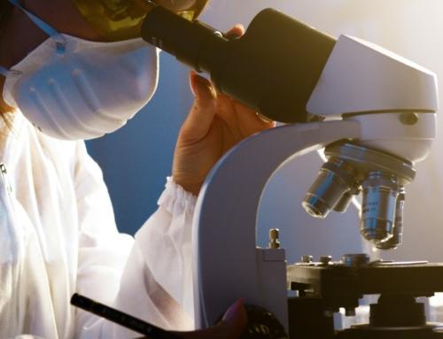 Personalized immunosuppressive regimen for transplanted patients